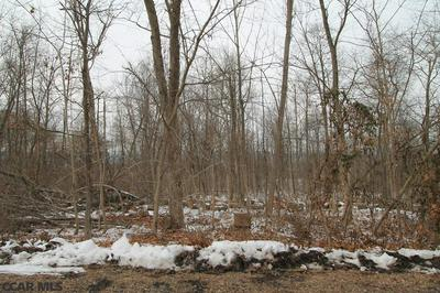 LOT ON COLD SPRINGS ROAD, Lewistown, PA 17044 - Photo 1