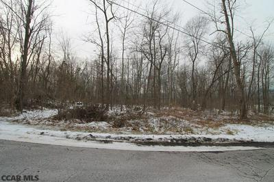 LOT ON COLD SPRINGS ROAD, Lewistown, PA 17044 - Photo 2