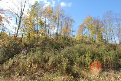 NEAR BARK CAMP RD, Penfield, PA 15849 - Photo 2