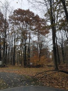 5274 STATE PARK RD, Penfield, PA 15849 - Photo 1
