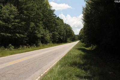 0 HIGHWAY 176 B, Little Mountain, SC 29075 - Photo 2