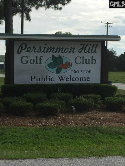 0 PERSIMMON DRIVE, Johnston, SC 29832 - Photo 1