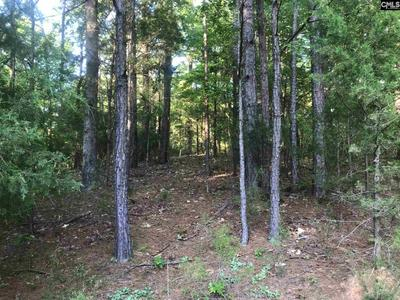 12380 BROAD RIVER RD, Little Mountain, SC 29075 - Photo 2