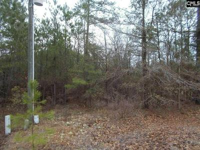 198 PINE GROVE RD, Lugoff, SC 29078 - Photo 1