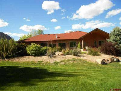 40793 HIGHWAY 141, Gateway, CO 81522 - Photo 1