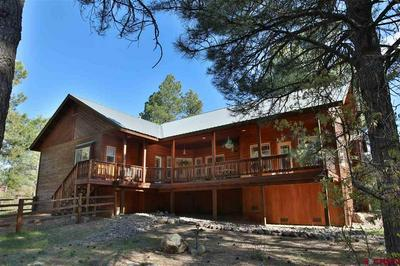 52 OLIVE CT, Pagosa Springs, CO 81147 - Photo 2