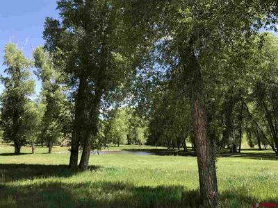 699 HERMOSA MEADOWS RD, Durango, CO 81301 - Photo 2