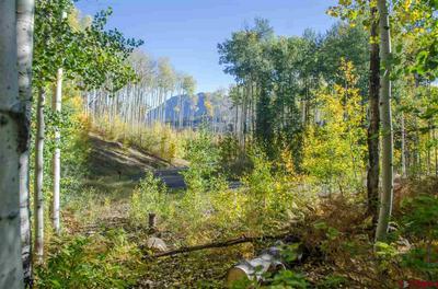 199 LONG STORY RD, Durango, CO 81301 - Photo 2