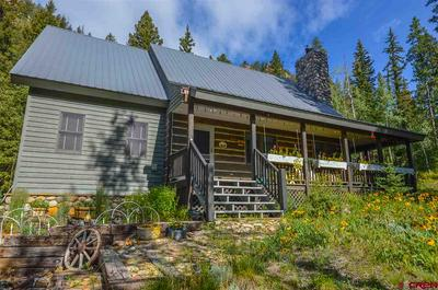 1183 COUNTY ROAD 744, Almont, CO 81210 - Photo 1