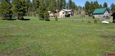 1095 HILLS CIR, Pagosa Springs, CO 81147 - Photo 2