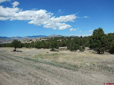 699 VALLEY VIEW RD, South Fork, CO 81154 - Photo 2