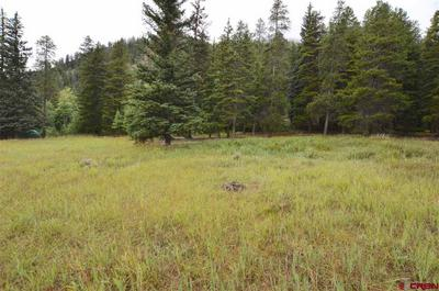 3 COUNTY ROAD 54, Almont, CO 81210 - Photo 1