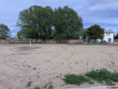 TBD LOT 304 ALCOTT CIRCLE, Montrose, CO 81401 - Photo 2