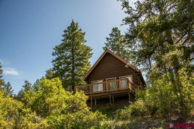 416 SUMMIT TRL, Pagosa Springs, CO 81147 - Photo 2