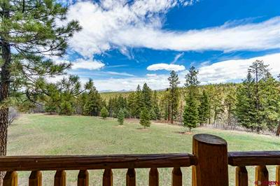 473 N BLACK BEAR PL, Pagosa Springs, CO 81147 - Photo 2