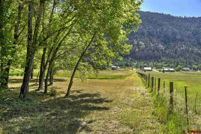 2151 COUNTY ROAD 250, Durango, CO 81301 - Photo 2