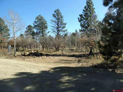 TBD MCKENZIE SPRINGS RANCH ROAD, Placerville, CO 81430 - Photo 1