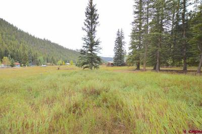 3 COUNTY ROAD 54, Almont, CO 81210 - Photo 2