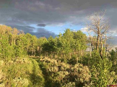 301 WILD ROSE LN, Almont, CO 81210 - Photo 2