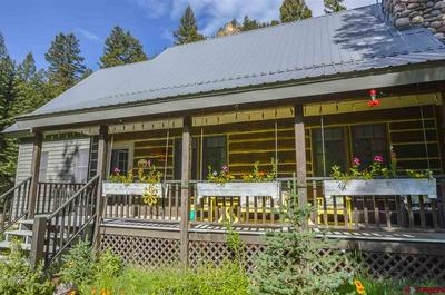1183 COUNTY ROAD 744, Almont, CO 81210 - Photo 2