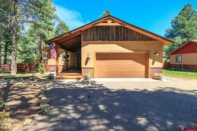 203 INSPIRATION DR, Pagosa Springs, CO 81147 - Photo 2