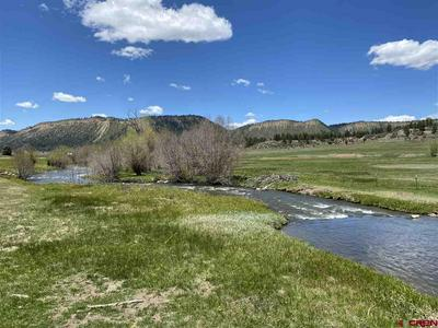 778A NAVAJO RIVER RD, Chromo, CO 81147 - Photo 2