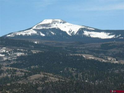 1094 VALLEY VIEW RD, South Fork, CO 81154 - Photo 1