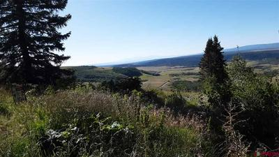 30 OVERLOOK WAY, Placerville, CO 81430 - Photo 1