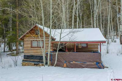 1730 COUNTY ROAD 744 UNIT 6, Almont, CO 81210 - Photo 2