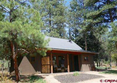 20 ROUND CT, Pagosa Springs, CO 81147 - Photo 2