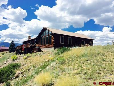 224 AMETHYST DR, Creede, CO 81130 - Photo 1