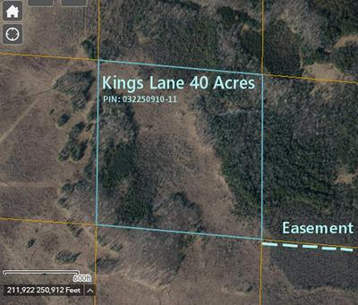 40 ACRES KINGS LANE, Custer, WI 54423 - Photo 1