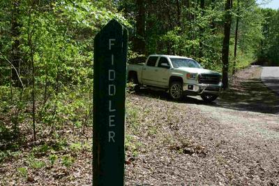 000 FIDDLER TRAIL, Wildersville, TN 38388 - Photo 2