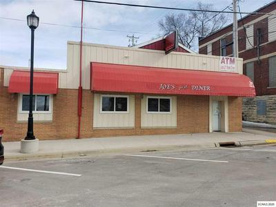 131 2ND ST NE, Dyersville, IA 52040 - Photo 2