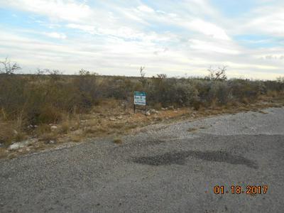 412 PUMA ST, Del Rio, TX 78840 - Photo 2