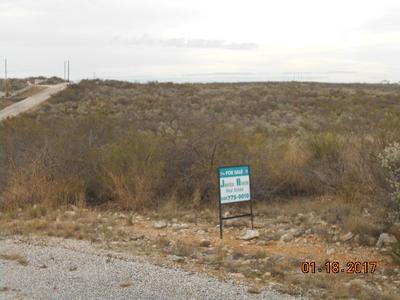 412 PUMA ST, Del Rio, TX 78840 - Photo 1