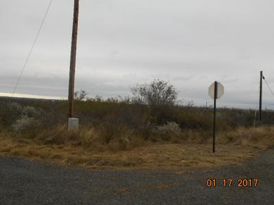 515 BLUEBONNET RD, Del Rio, TX 78840 - Photo 2