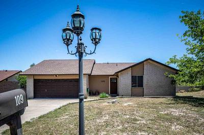 109 RIATA DR, Del Rio, TX 78840 - Photo 2