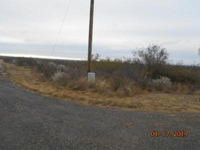 515 BLUEBONNET RD, Del Rio, TX 78840 - Photo 1