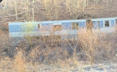00 DODSON BRANCH, Prestonsburg, KY 41653 - Photo 2