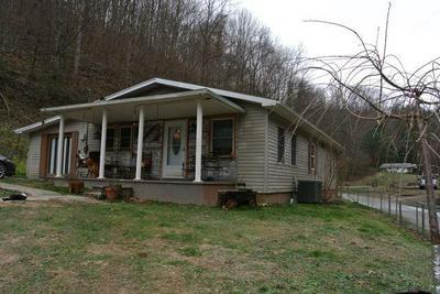 1499 SALYERS BR, Hueysville, KY 41640 - Photo 1