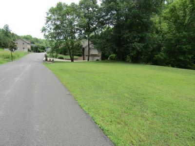 LOT 33A EASY STREET, Staffordsville, KY 41256 - Photo 2