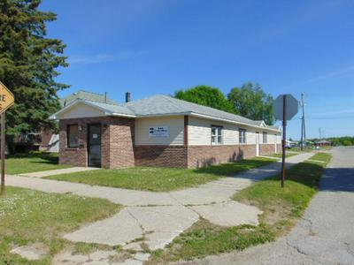 123 E TRUMAN ST, Newberry, MI 49868 - Photo 2