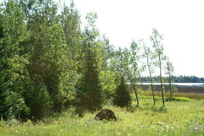 000 M-134, Cedarville, MI 49719 - Photo 1
