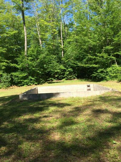 0 STEUER RD, Eckerman, MI 49728 - Photo 2