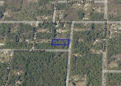 2128 ORANGE ST, Bunnell, FL 32110 - Photo 1
