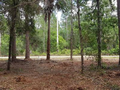 2610 SANDLEWOOD LN, Bunnell, FL 32110 - Photo 1