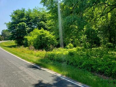 0 HARDY PLACE ROAD, Johnston, SC 29832 - Photo 1