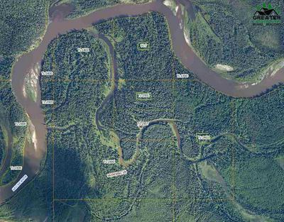 NHN SALCHA RIVER, SALCHA, AK 99714 - Photo 1