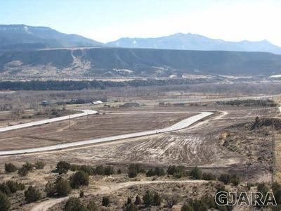 310 COUNTY ROAD 215, Parachute, CO 81635 - Photo 1